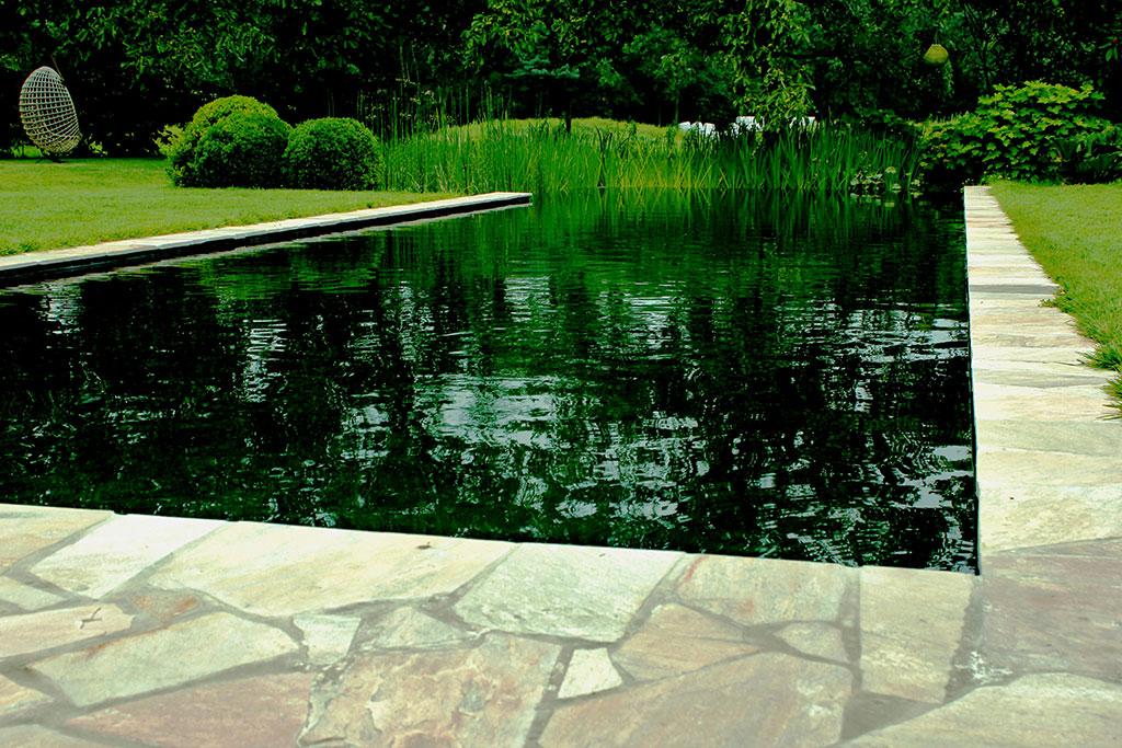 Zwemvijvers en ecologische zwembaden vilaqua te mol antwerpen